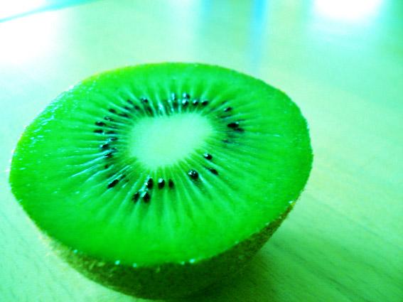 a kiwi photograph cross-processed
